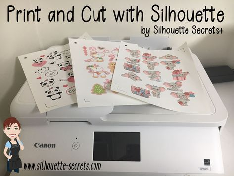 Progetti Per Silhouette Cameo : Silhouette secrets because some things are just too good not to
