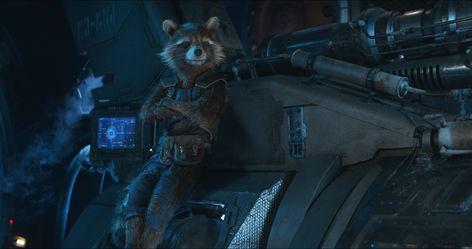 HD wallpaper: rocket raccoon, avengers infinity war, 2018 movies, hd, mammal