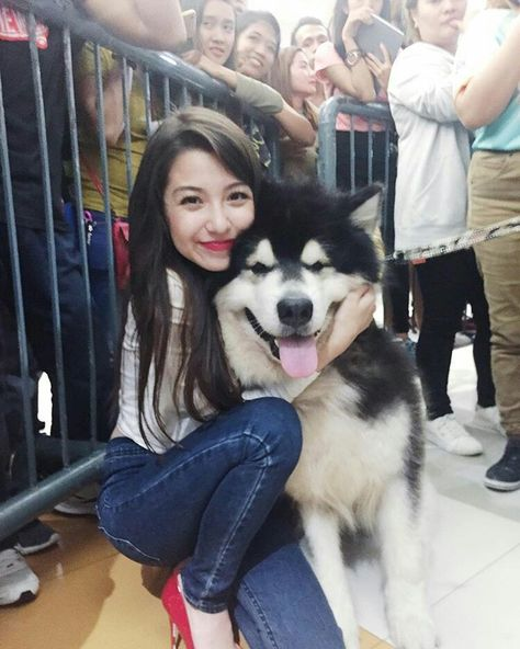 Pin By Anya Sking On Donnalyn Bartolome Dogs Animals Husky