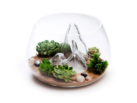 Dollhouse Miniature Cute Transparent Glass Jar Fishbowl Bank Flower pot TO