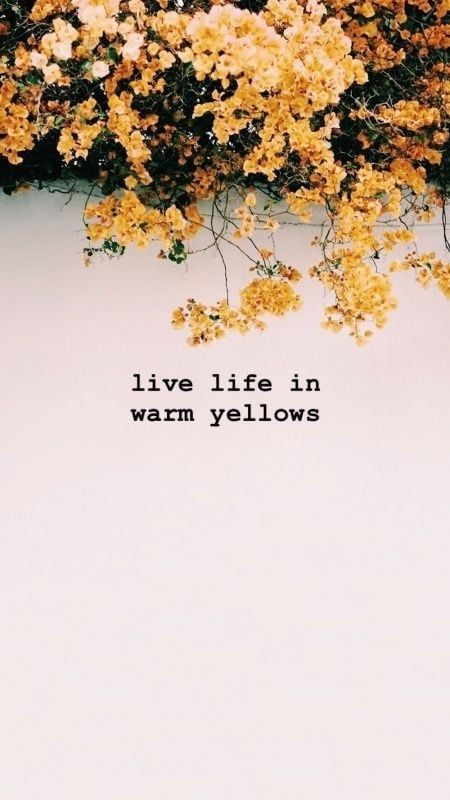 Pinterest Carriefiter 90s Fashion Street Wear Street Style Photography Style Hipster Vintage Design Landsc Flower Quotes Love Yellow Quotes Color Quotes