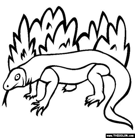Komodo Dragon Coloring Page Free Komodo Dragon Online Coloring