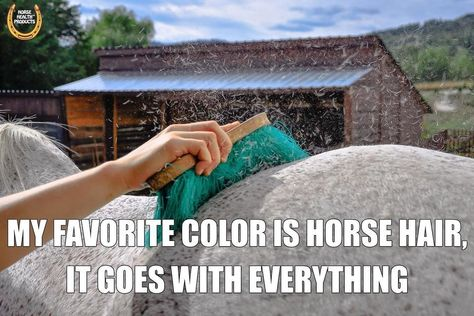 Yup Horse Hair Is My Favorite Color In 2020 Horse Hair My Favorite Color Horse Hair Bracelet