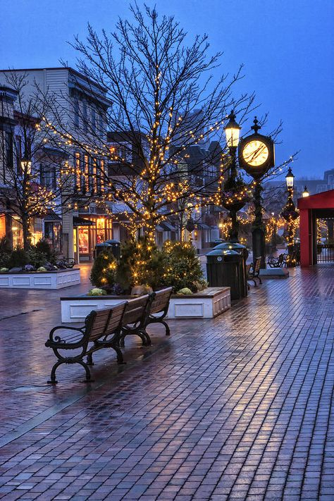 Cape May Christmas Photograph by Tom Singleton - Cape May Christmas Fine Art Prints and Posters for Sale New Jersey Travel Honeymoon Backpack Backpacking Vacation Budget Wanderlust Off the Beaten Path Christmas Scenes, Christmas Lights, Merry Christmas, Christmas Canvas, Christmas Time, Christmas Christmas, Cape May, New Jersey, Jersey Girl