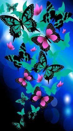 Albuns de borboletas