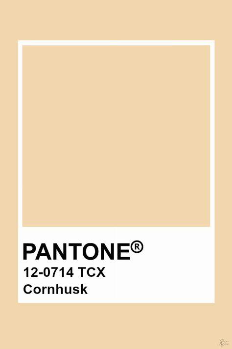 Pantone Cornhusk