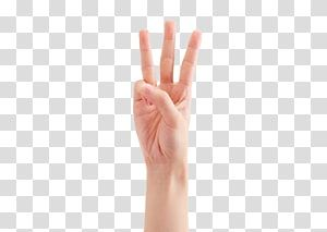 Person S Right Hand Thumb Hand Model Gesture Three Fingers Transparent Background Png Clipart Hand Sticker Clip Art Hand Model