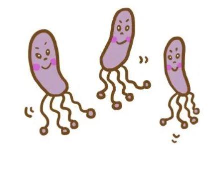 症状 ピロリ 菌