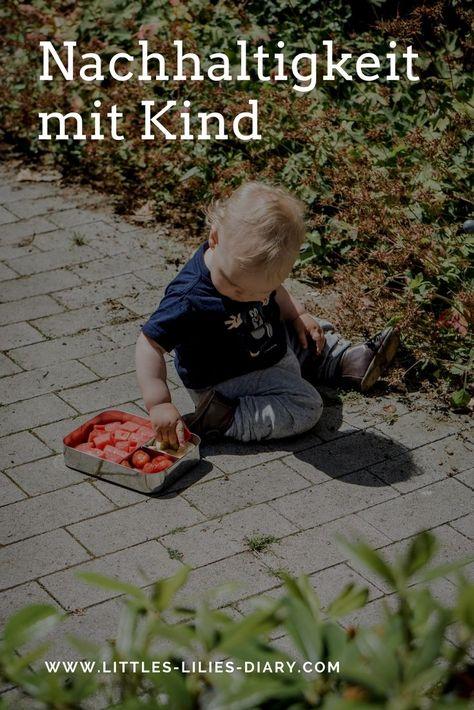 13 umwelt kindergartenideen  umwelterziehung umwelt