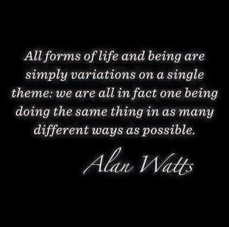 Top quotes by Alan Watts-https://s-media-cache-ak0.pinimg.com/474x/0e/76/5a/0e765a65d5cdd78e868084291582a538.jpg