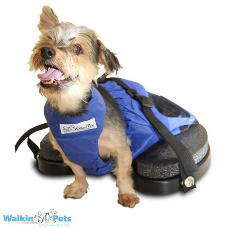 Custom Pet Clothing Dog Thanksgiving Shirt Dog Clothing Dog Clothing Turkey Face Tuxedo Shirt Small MediumLarge  Dog Shirt
