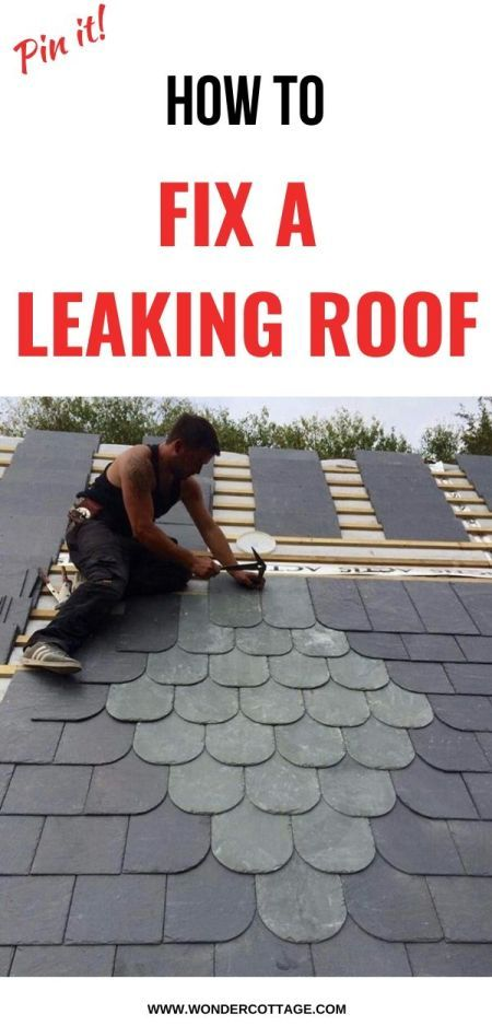 5 Roof Repair Tips For Fixing A Leaking Roof Leaking Roof Roof Repair Roof