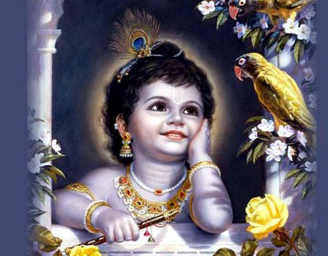 Lord Krishna Images Wallpapers भगव न श र क ष ण