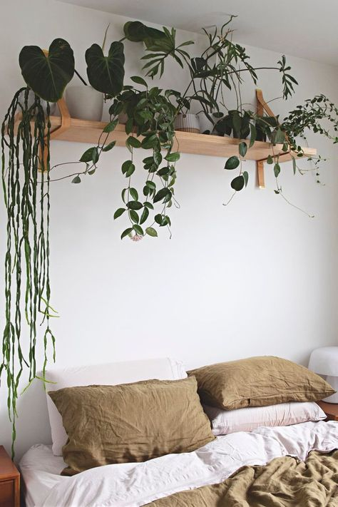 This Horticulturist's Small Melbourne Home Is as Delightfully Plant-Filled and. This Horticulturist's Small Melbourne Home Is as Delightfully Plant-Filled and Green as You'd E Diys Room Decor, Bedroom Plants Decor, House Plants Decor, Room Ideas Bedroom, Plant Decor, Small Room Bedroom, Couple Bedroom, Small Rooms, Decor Ideas