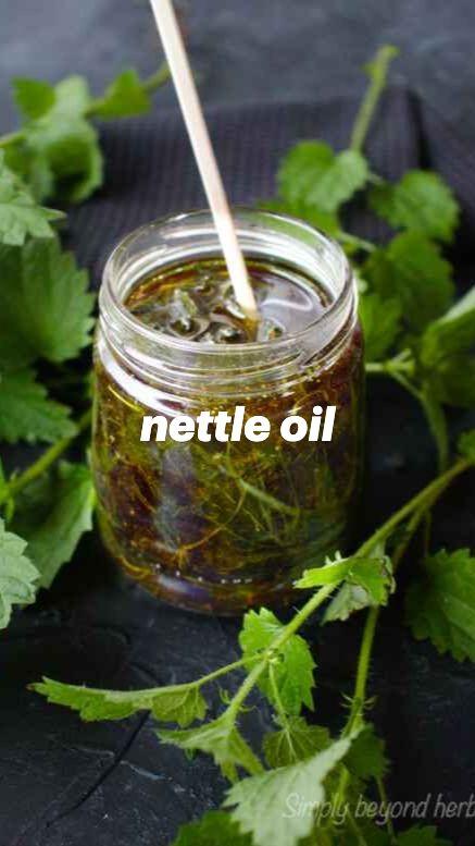 nettle oil