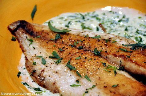 Pompano With Tarragon Cream Sauce Necessary Indulgences Fish Recipes Baked Pompano Recipe Cream Sauce