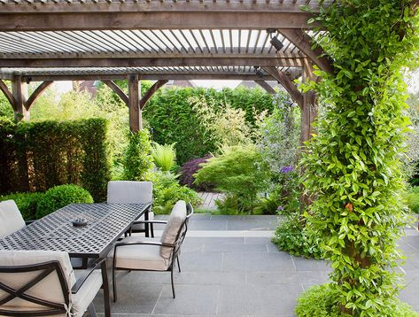 Garden by The Garden Company : James Scott MSGD. Photo