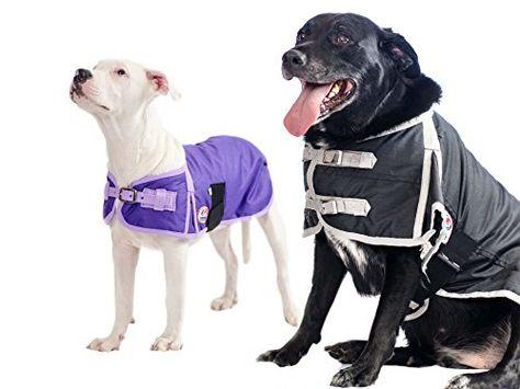 Small All Star Dogs I Love New York Polar Fleece Hooded Dog Jacket