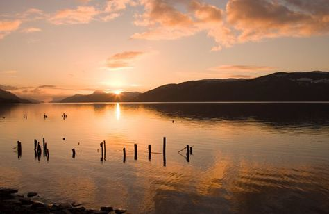 An Talla by Loch Ness is a cafe and retail destination with exclusive gifts and souvenirs. Available to buy in store or online.