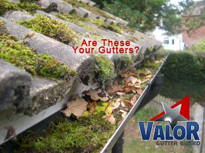 Have Moss In Your Gutters Valor Moss Away Is The Product To Make