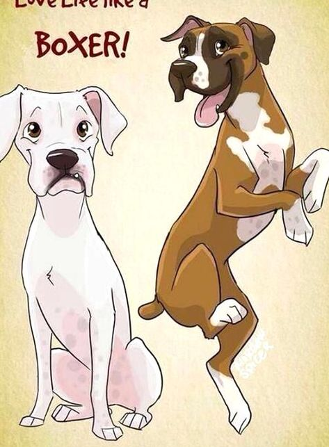Like A Boxer In 2020 Boxer Dogs Boxer Puppies Cartoon Dog