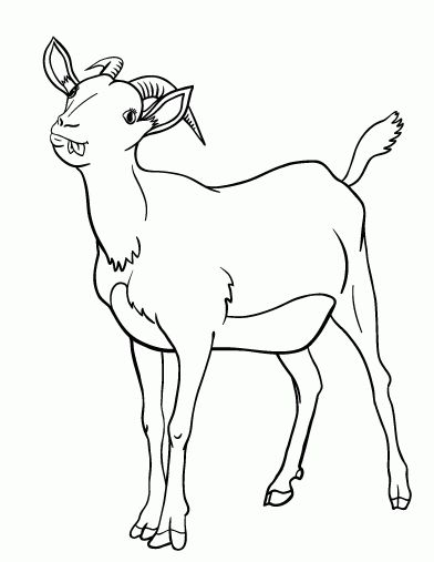 Goat Coloring Pages Free Goat Coloring Page Coloring Pages