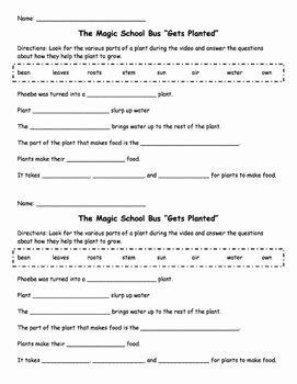 47 Magic School Bus Worksheet Chessmuseum Template Library Magic School Bus Magic School Persuasive Writing Prompts