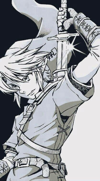 Link The Legend Of Zelda Dessin Zelda Zelda Dessin Manga