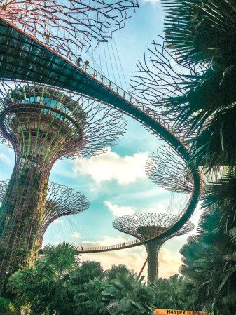 0ee707ea1fcca87264c07105a59b0504 - Gardens By The Bay Singapore On Budget