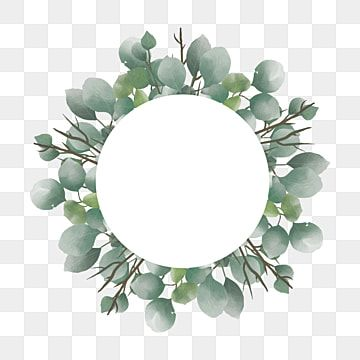 Watercolor Eucalyptus Leaf Frame With Blank White Circles Eucalyptus Background Frame Png And Vector With Transparent Background For Free Download Leaf Clipart Flower Clipart Rose Clipart