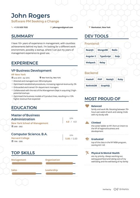 Examples of resumes by Enhancv sample resumeu0027s Pinterest - vp resume