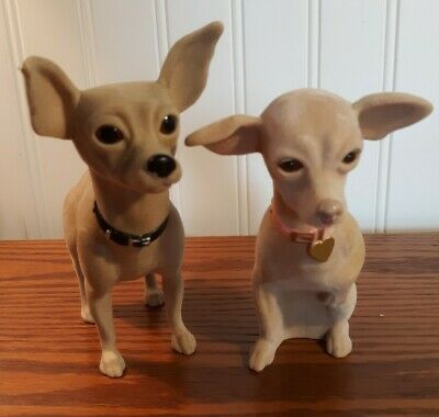 Pin On Chihuahua Items And Dog Information
