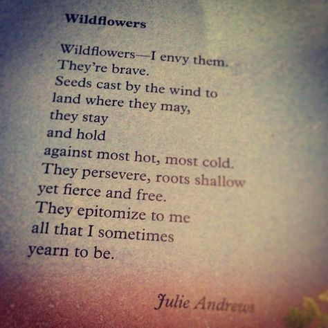 "Wildflowers - Julie Andrews. ""They epitomize to me all that I sometimes year to be."""