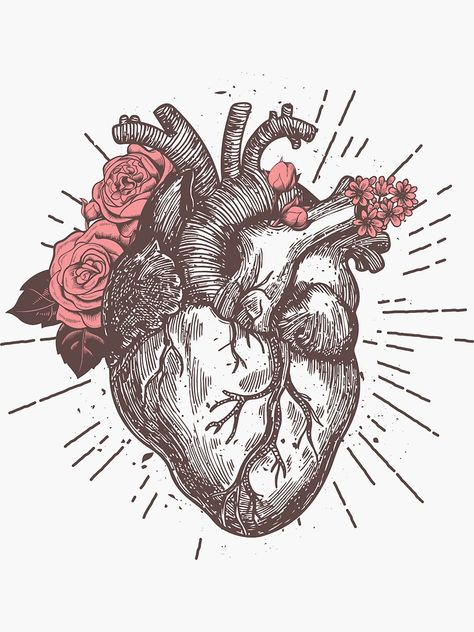Tattoo Ideas Female Discover Anatomical Heart Floral Sticker by nameonshirt Anatomical Heart Drawing, Anatomical Tattoos, Heart Sketch, Posca Art, Design Tattoo, Heart Tattoo Designs, Heart Illustration, Anatomy Art, Heart Art