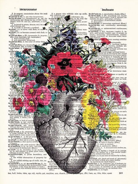 Anatomical Heart And Flowers Human Anatomical Heart Poster