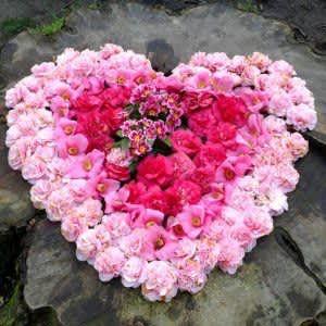 Machen maiherzen rosen selber Maiherz selber
