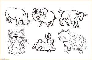 23 Gambar Kartun Hewan Di Darat Di 2020 Dengan Gambar Kartun