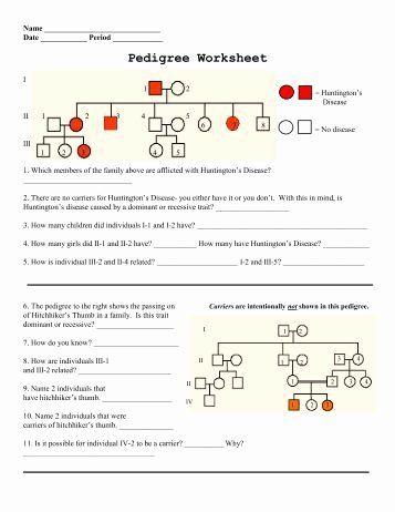 Genetics Pedigree Worksheet Answer Key - worksheet