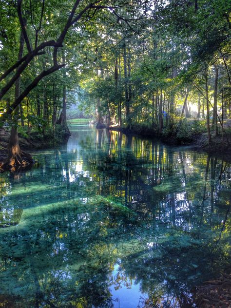 Little Piece of Heaven Ginnie Springs, FL Beautiful World, Beautiful Places, Beautiful Pictures, Nature Pictures, Nature Aesthetic, Travel Aesthetic, Fantasy Landscape, Sunset Landscape, Aesthetic Pictures