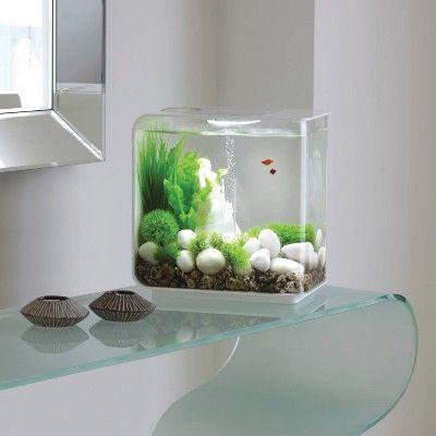 Biorb Flow 15 With Led Lights Aquarium White Aquarium Decorations Cool Fish Tanks Modern Fish Tank