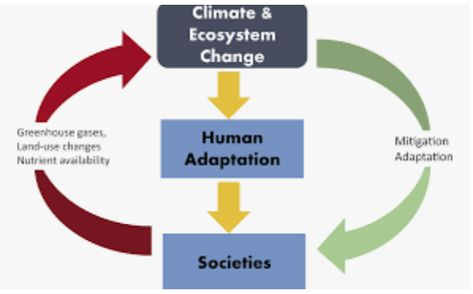 Climate Change and Culture