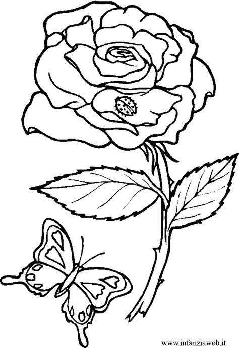 Disegni Da Colorare Categoria Fiori E Piante Immagine Rosa Con