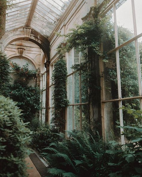 Abandoned Places Near Me Dark Green Aesthetic, Nature Aesthetic, Plant Aesthetic, Witch Aesthetic, Aesthetic Bedroom, Jardin Decor, Slytherin Aesthetic, Abandoned Places, Abandoned Houses