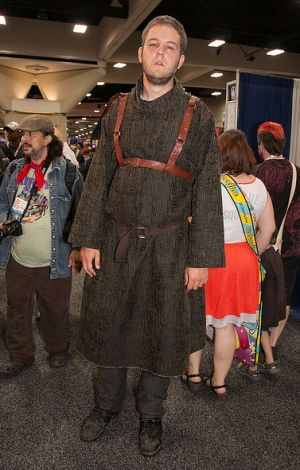 Pin by Tahnia Paxton on Halloween costumes Pinterest Game of - halloween costume ideas for men diy