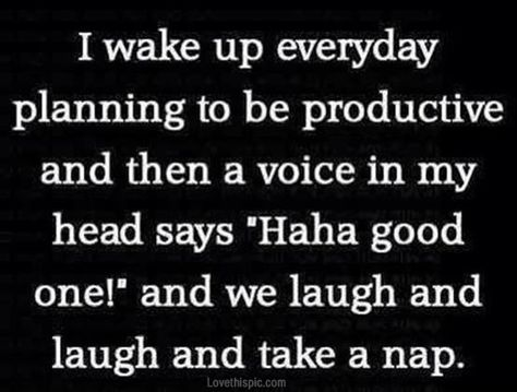 every morning funny quotes quote funny quote funny quotes funny sayings