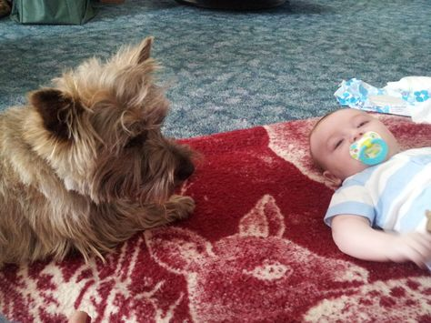 My Fuzzy Babysat My Great Nephew Preston While His Mommy Fixed Her