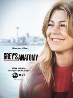 Grey's Anatomy Saison 15 Episode 22 Streaming Vf : grey's, anatomy, saison, episode, streaming, Serie, Grey's, Anatomy, Saison, Streaming, Greys, Season,, Anatomy,