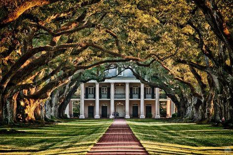 abandoned southern plantations for sale Oak Plantation an