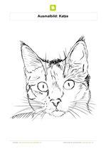 Ausmalbild Katze Kopf Ausmalbilder Katzen Katzen