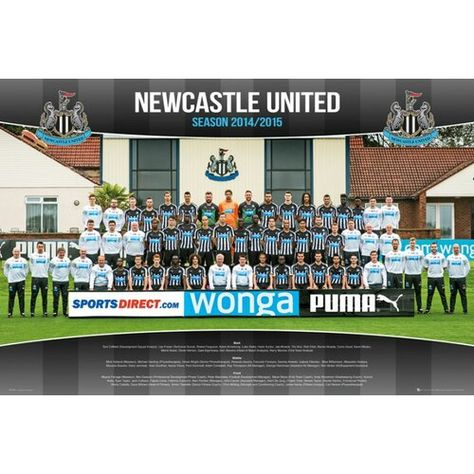 Newcastle United Team Photo 14/15 Wall Art Poster 1Art1
